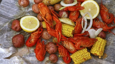 What Months Are Crawfish in Season?
