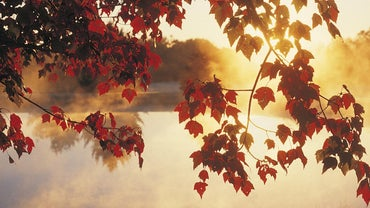 What Months in North America Are Considered Fall?