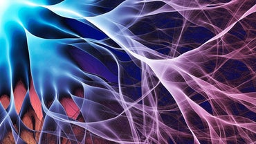 What Is the Movement of Electrons?