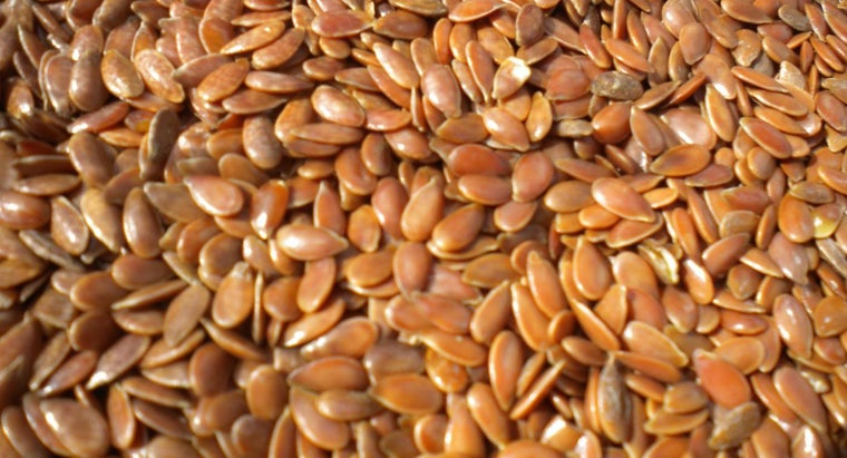 much-flax-seed-should-per-day