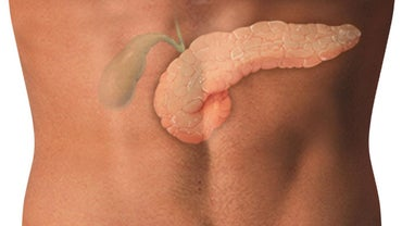 How Much Does a Gallbladder Weigh?