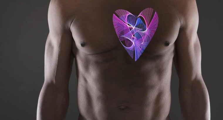 much-human-heart-weigh