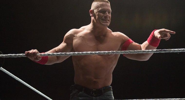 much-money-professional-wrestler-make-week