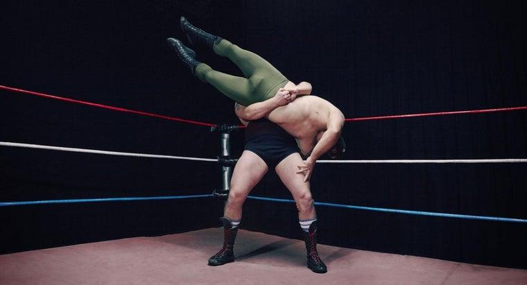 much-money-professional-wrestler-make