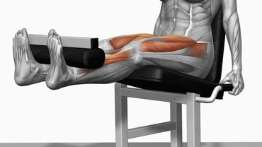 What Muscles Are Used in Leg Extensions?