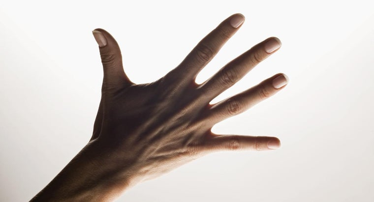 names-five-fingers-hand