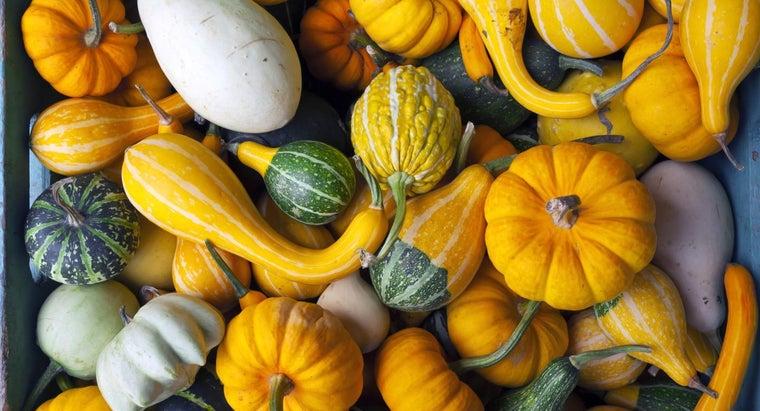names-gourds
