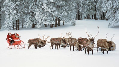 What Are the Names of Santa Claus' Reindeer?