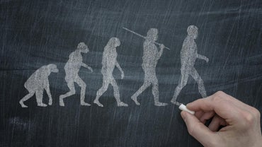 How Does Natural Selection Lead to Evolution?