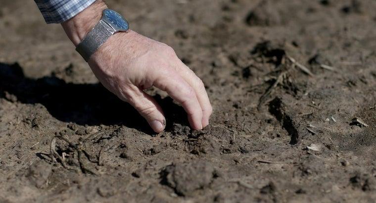 need-soil