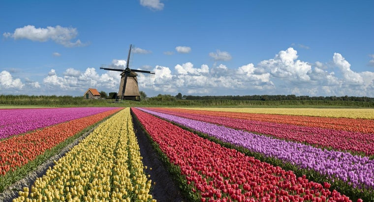 netherlands-famous
