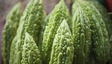 What Is a Bitter Melon Tea?