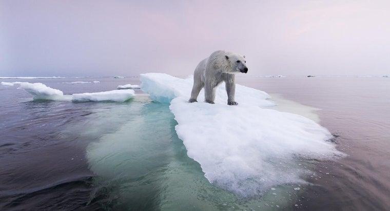 ocean-contains-icebergs