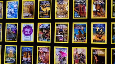 Are Old National Geographic Magazines Worth Money?