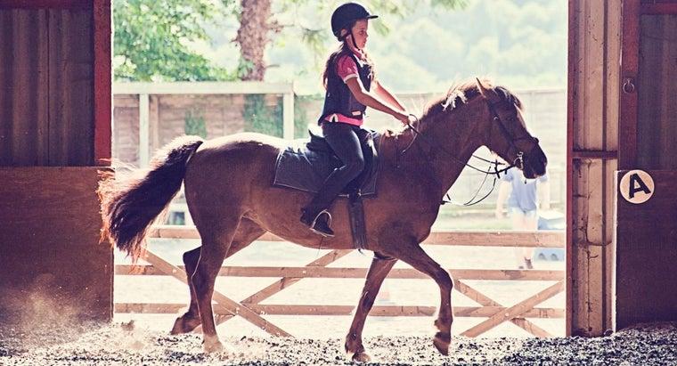 online-pony-makers