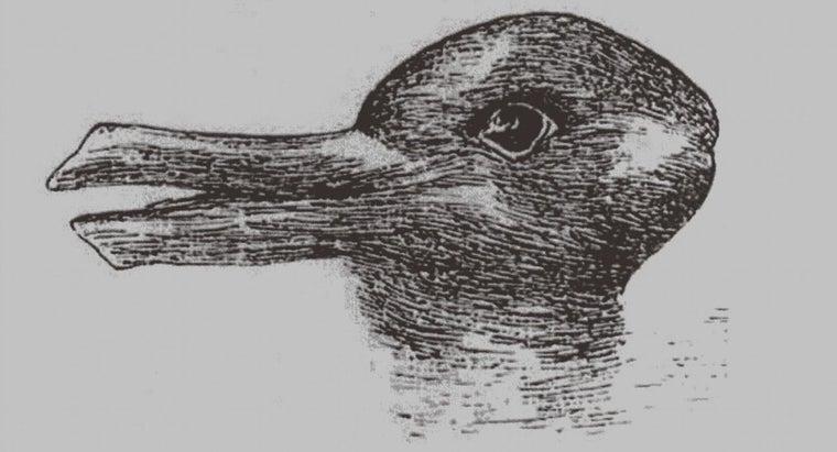 optical-illusions-work