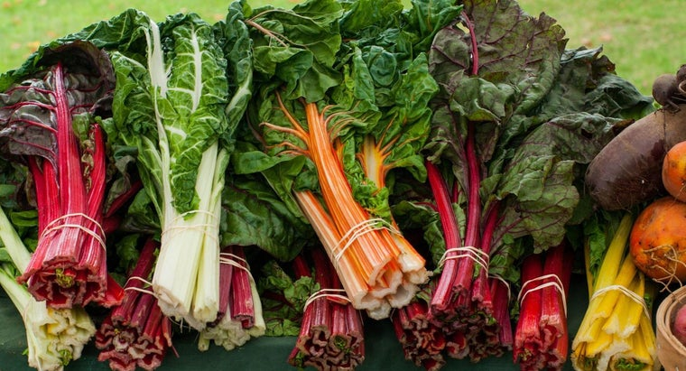 organic-food-important