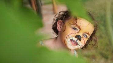 How Do You Paint Lion Faces?