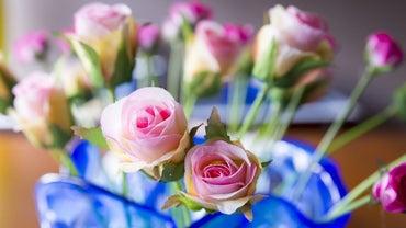How Do You Paint Silk Flowers?