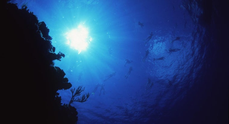 palancar-reef