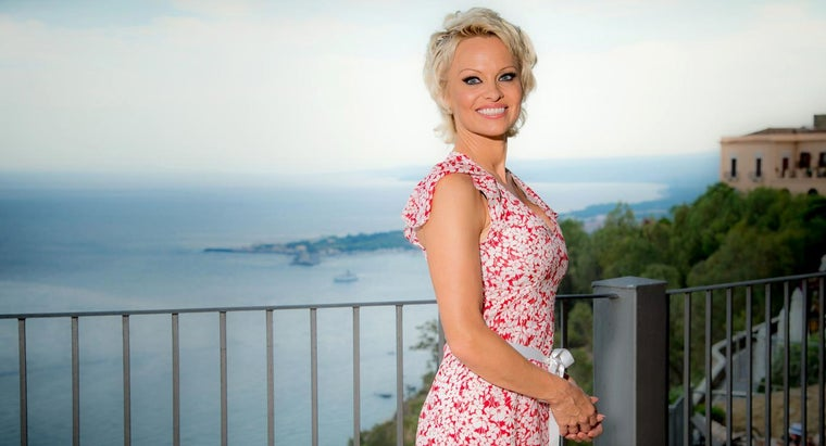 pamela-anderson-display-her-own-picture-gallery-public
