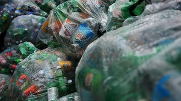 What Percent of People Recycle?