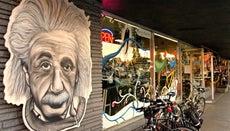 What Percentage of His Brain Did Einstein Use?