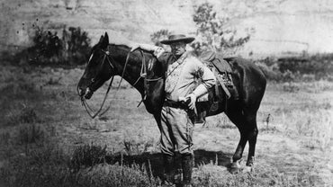 To Which Political Party Did Theodore Roosevelt Belong?
