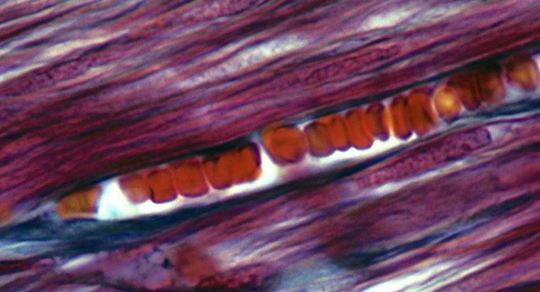 popped-blood-vessels-away