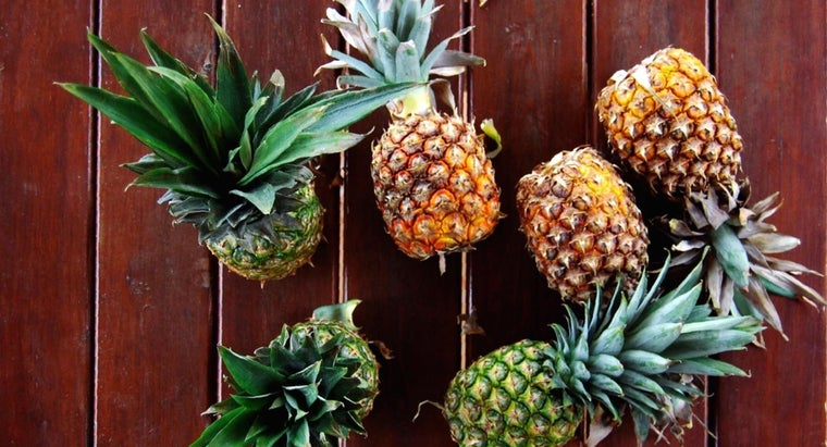 popular-fruits