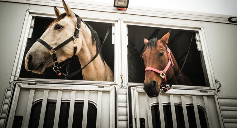 pre-owned-horse-trailers-generally-cost