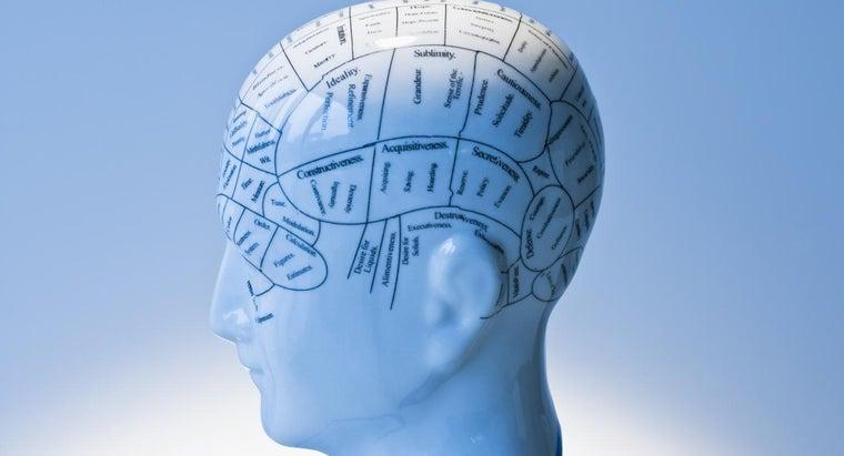 presumed-functions-did-phrenology-highlight
