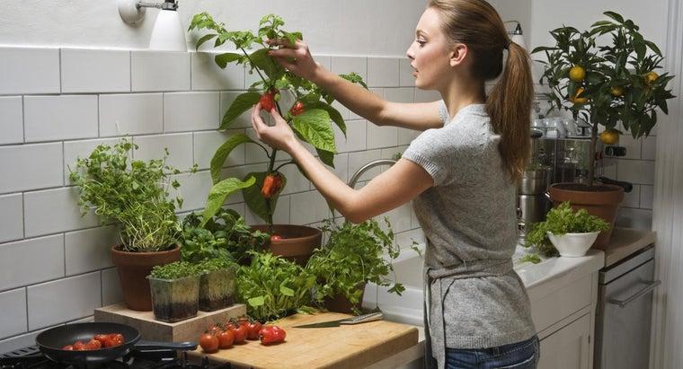 proper-way-fertilize-pepper-plants