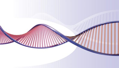 What Is the Purpose of Ethanol in DNA Extraction?