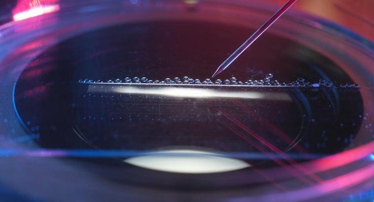 purpose-gene-therapy