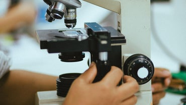 What Is the Purpose of a Microscope?