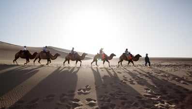 What Was the Purpose of the Silk Road?
