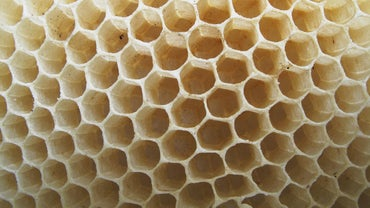 What Are Some Real-Life Examples of Hexagons?