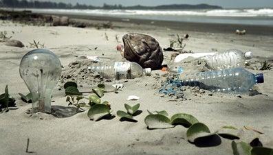 How Do You Reduce Your Trash Output?