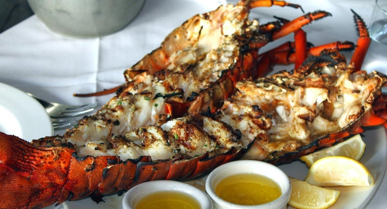 reheat-cooked-lobster