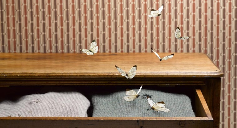 rid-moths-closet