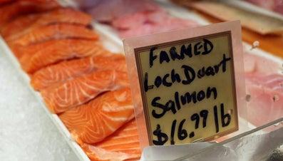 Is Salmon Fattening?