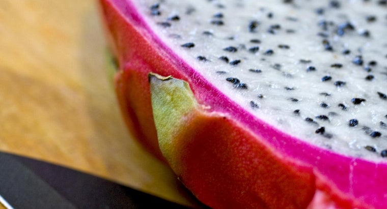 season-grow-dragon-fruit