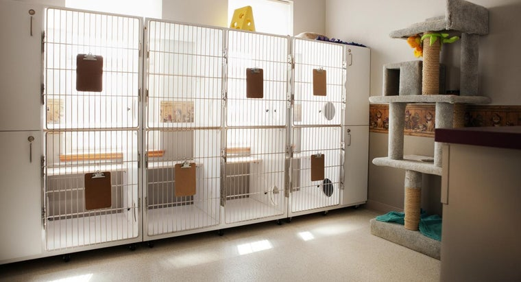 set-up-boarding-kennels-dogs
