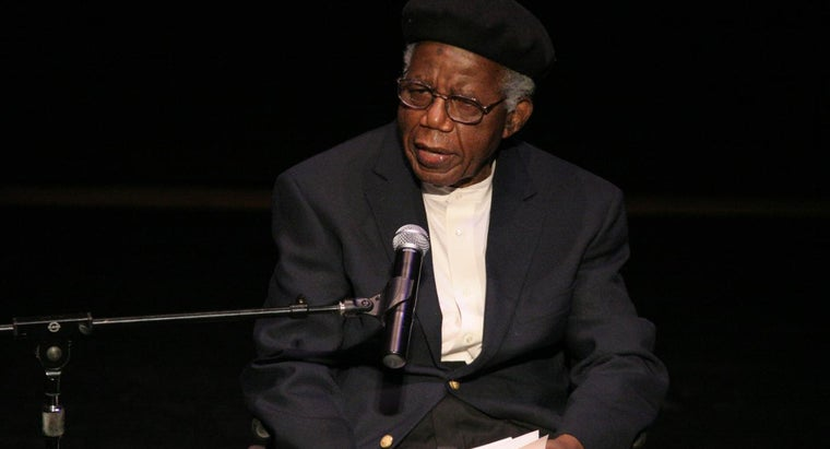 short-story-voter-chinua-achebe
