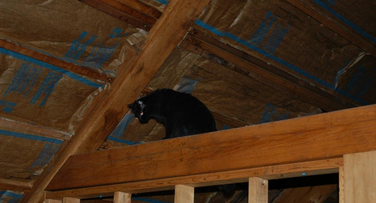 should-insulate-between-rafters-attic