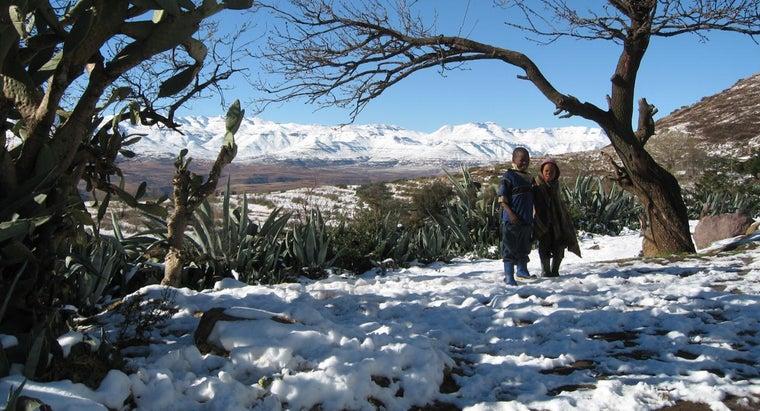 snow-africa