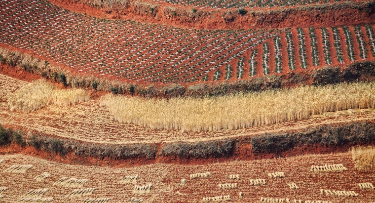 soil-composition