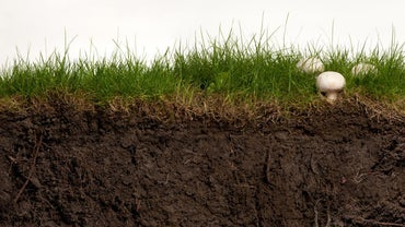 How Does Soil Form?