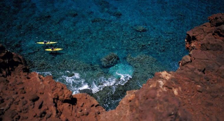 soil-type-coral-reef